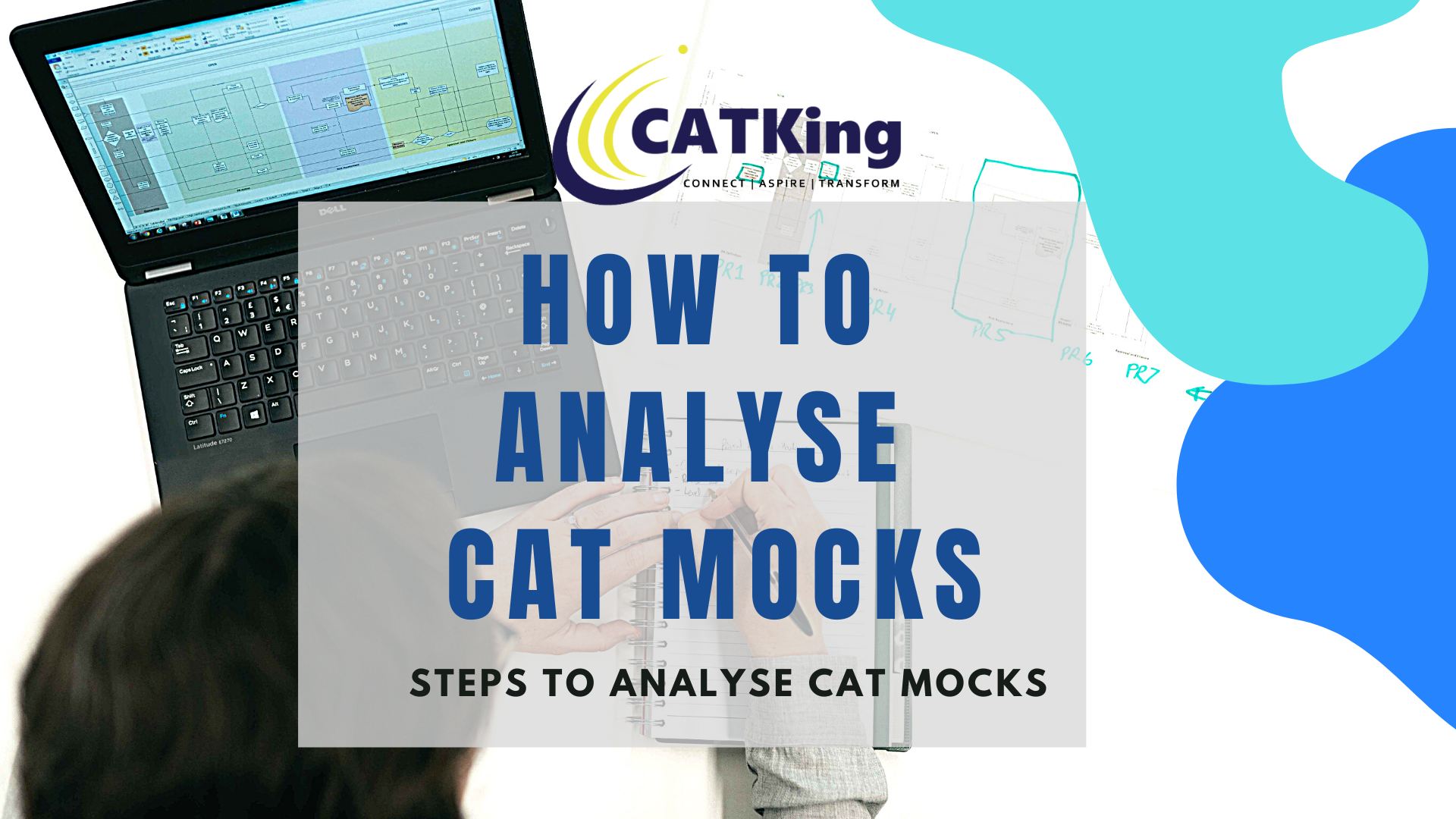 catking how to analyse cat mocks